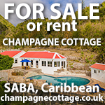 luxury naturist retreat caribbean for sale rent holidays saba island home